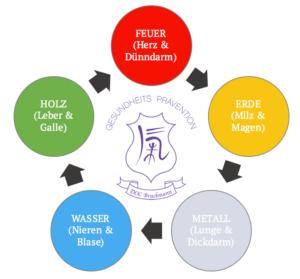 5 Elemente TCM
